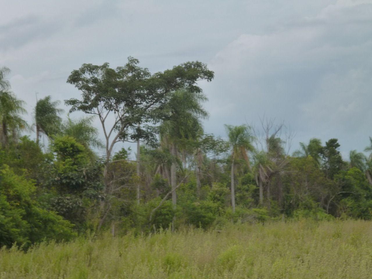 Terreno en Eusebio Ayala monoambiente
