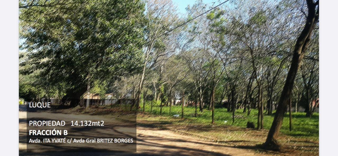 Terreno en venta Campo Grande