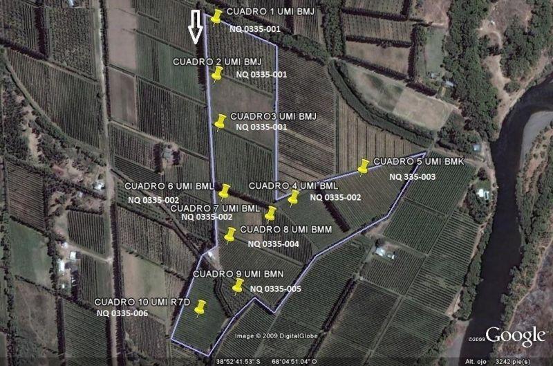 Lote en Centenario, Zona Los Olivos | MEM137 | Mercado Inmobiliario
